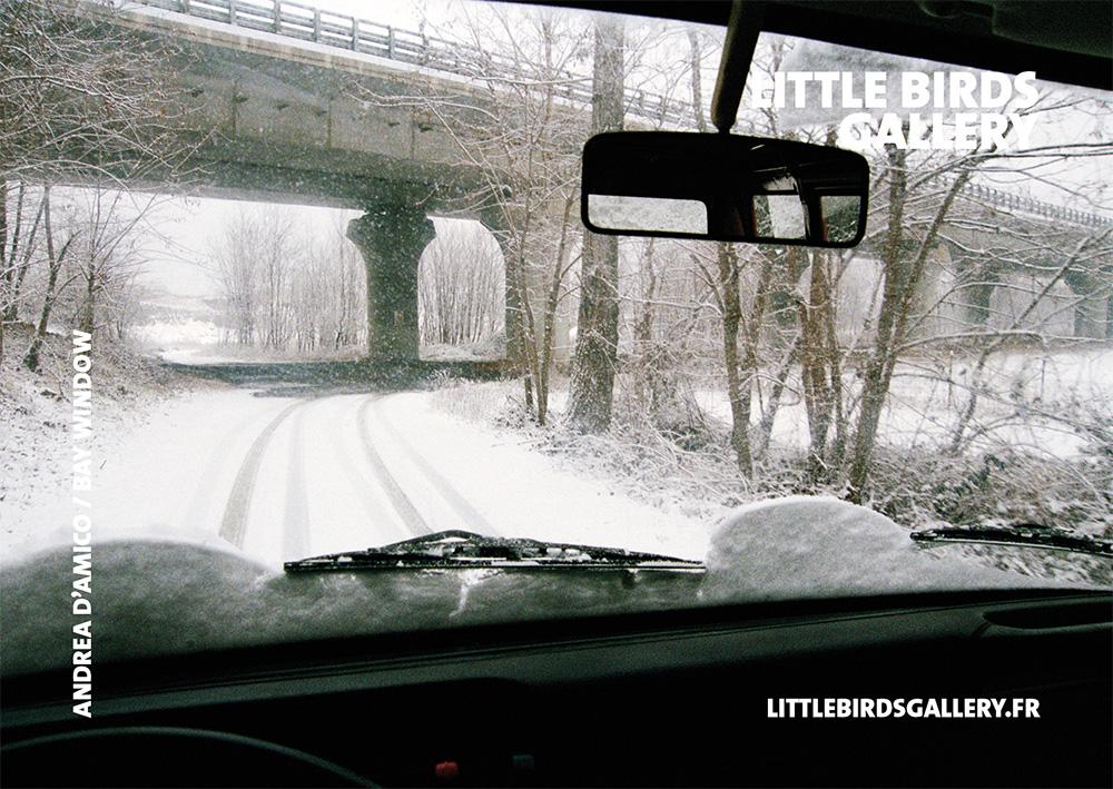 ANDREA-BRUSSELS-LITTLEBIRDSGALLERY